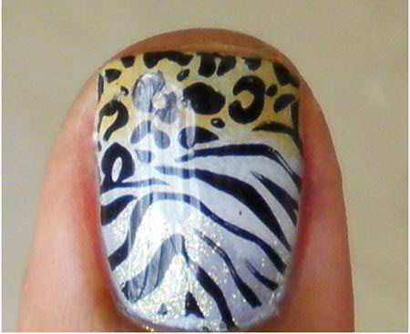 Print Animal Leopard Zebra