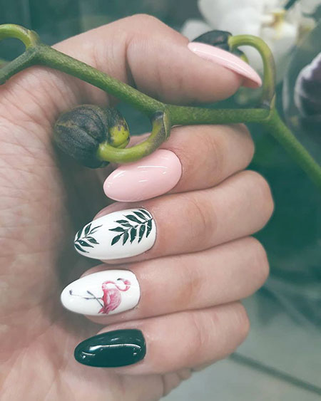 Nail Manicure Art Design