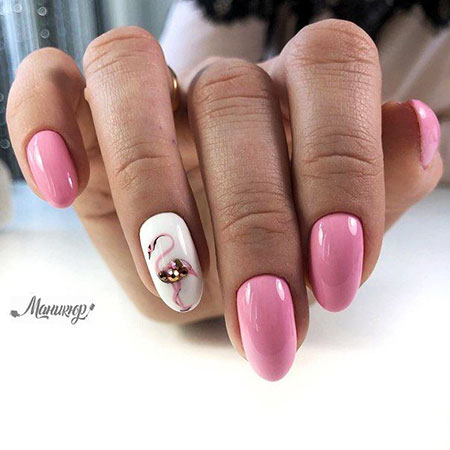 Short Flamingo Nails, Nail Manicure Nails Дизайн