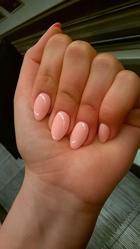 Nails Shape Almond Nail