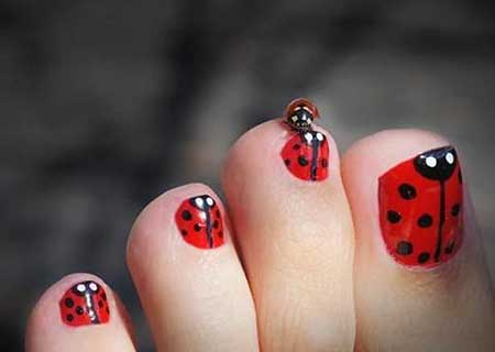 Ladybug Nail, Lady Bug, Ladybug Toe, Ladybugs, Toe Nail, Art, Bug, Lady, Toes