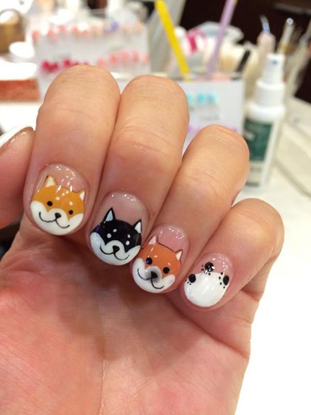 Dog Panda Kitty Cat