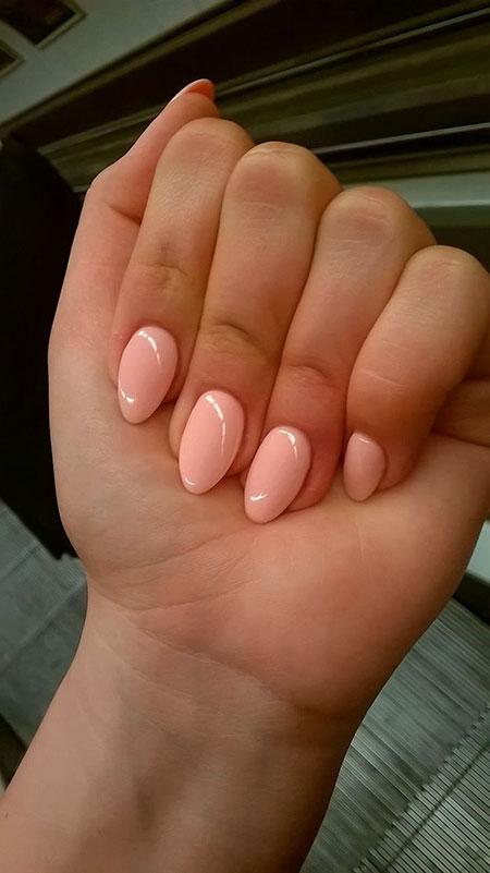 Nails Shape Almond Nail
